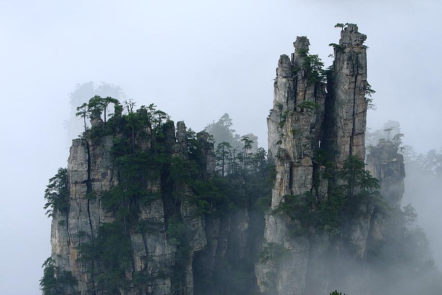 由中国第一个国家森林公园——张家界国家森林公园和天子山自然保护区