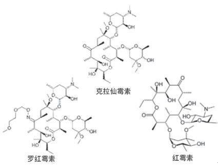 红霉素主要用于青霉素类过敏者.耐青霉素类过敏者